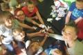 Летний лагерь «Авокадо» приглашает провести самые веселые каникулы