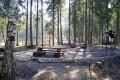 Пикниковые точки в Зеленограде