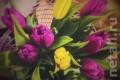 Нелегального торговца тюльпанами задержали у клуба Z1 благодаря рекламе в Instagram