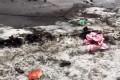«Подснежники» в парке Победы