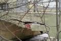 Разрушающееся крыльцо дома в 7-м микрорайоне пообещали отремонтировать к середине года